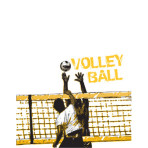 Volleyball Players Net
