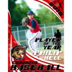 Baseball Focus Design