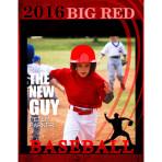Baseball Window Box